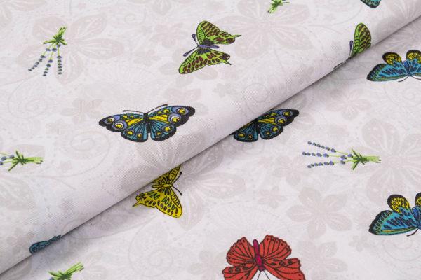 Schmetterlinge 1.