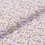Mini-Lavendel
